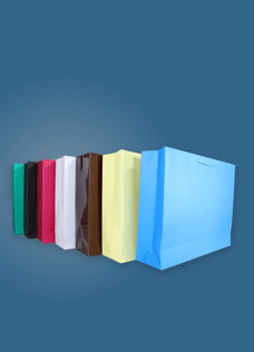 Colored Paper Gift Bags