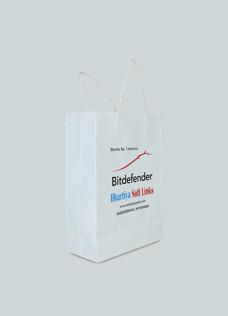 Corporate Paper Bag