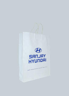 Paper Bags Printed with Logo