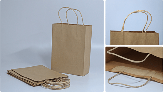 ecofriendlyPaperBags-hpmepage