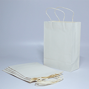 "White Kraft Paper Bags (8""x11""x3.8"")Pack of 10"